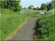 SK6513 : Gaddesby Lane Rearsby by Alan Murray-Rust