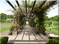 SJ7481 : Tatton Park gardens - pergola by Stephen Craven