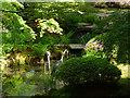 SJ7481 : Tatton Park gardens - cranes by Stephen Craven