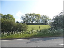 TL2732 : Fields by Clothall Road by David Howard