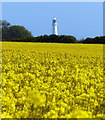 TA2570 : Flamborough Head Lighthouse by Mat Fascione