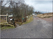 NN3039 : West Highland Way goes under the railway by Richard Law