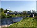 SH7401 : Dyfi Millennium Bridge : Week 21