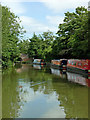 SP5365 : Grand Union Canal south of Braunston in Northamptonshire by Roger  Kidd