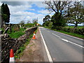 SO1730 : Cones alongside the A479 in the north of Pengenffordd, Powys by Jaggery
