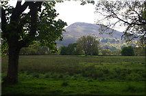 NN5833 : West of Loch Tay by Ian Taylor
