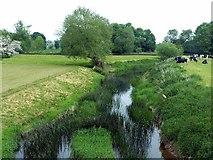 SK6515 : River Wreake at Thrussington by Alan Murray-Rust