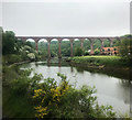 NZ8909 : Larpool viaduct, near Whitby by J.Hannan