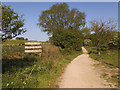 SE2641 : Start of bridleway through Breary Marsh Nature Reserve by Stephen Craven