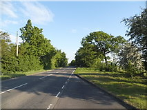 TL3154 : Old North Road south of Longstowe by David Howard