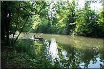 TL3514 : River Lea near Ware by Julian Osley
