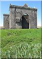 NY4996 : Hermitage Castle by David Hawgood