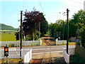 SY2592 : Seaton Tramway Swan Hill Road level crossing, Colyford by Brian Robert Marshall