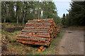 NH7579 : Pile of Logs in Glen Aldie by Chris Heaton