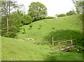 ST5865 : The valley behind Yewtree Farm by Neil Owen