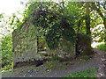 SW9453 : Derelict china stone mill, Tregargus Valley by Chris Allen