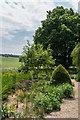 SU8512 : The Wild Gardens, West Dean Gardens by Ian Capper