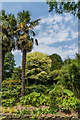SU8612 : The Spring Garden, West Dean Gardens by Ian Capper