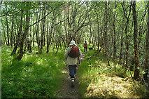 NH0064 : At the start of the Beinn Eighe Reserve Mountain Trail by Julian Paren