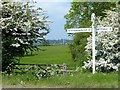 SK6811 : Fingerpost, footpath and flowering may by Alan Murray-Rust