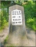 SJ6903 : Milestone, Blist's Hill by MilestoneSociety