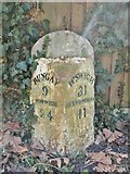 TM3876 : Milestone, Halesworth by MilestoneSociety