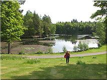 NT4227 : Bowhill Upper Loch by David Hawgood