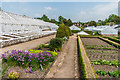 SU8612 : The Cutting Garden, West Dean Gardens by Ian Capper