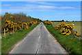 NH7587 : Minor Road at Cuthill by Chris Heaton