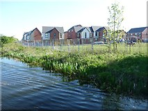SK0101 : New housing development off Turnstone Road, Harden by Christine Johnstone