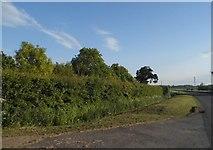 TL2556 : The B1040 near Great Gransden by David Howard