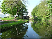 SJ9400 : Rookery Bridge, from the north-east by Christine Johnstone