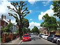 TQ1781 : Mount Park Road, Ealing by Malc McDonald