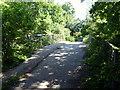 TQ5819 : Runts Farm Bridge, Cuckoo Trail by PAUL FARMER