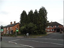 SP0272 : Birmingham Road, Alvechurch by David Howard
