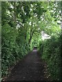 SP3999 : Footpath at the Bosworth Battlefield Heritage Centre by Graham Hogg