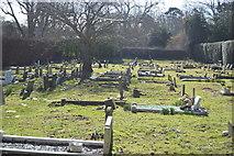 TR3154 : Churchyard, Church of St Mary by N Chadwick