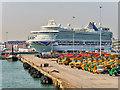 SU4210 : Cruise Ship at Southampton Ocean Terminal by David Dixon