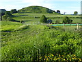 TR1637 : Summerhouse Hill by Marathon