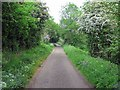 NZ0084 : Minor road at Ferny Brae east of Kirkwhelpington by Andrew Curtis