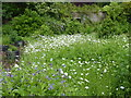 TQ7942 : At Iden Croft Herb Garden by Marathon