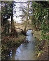 SP1869 : Kingswood Brook above Dick's Lane by Robin Stott