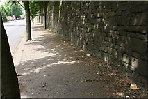SE0724 : Stone wall beside Burnley Road by Roger Templeman