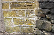 SE0724 : Benchmark on wall angle outside #48 Warley Road by Roger Templeman