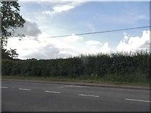 SP3645 : Stratford Road, Edgehill by David Howard