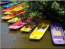 SP5206 : Colourful punts on the River Cherwell by Philip Halling