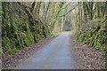 SX5261 : West Devon Way by N Chadwick