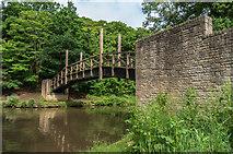 SU9948 : Footbridge over the River Wey by Ian Capper