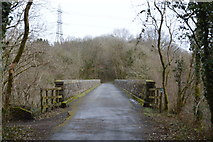 SX5261 : Bickleigh Viaduct by N Chadwick