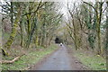 SX5261 : West Devon Way by N Chadwick